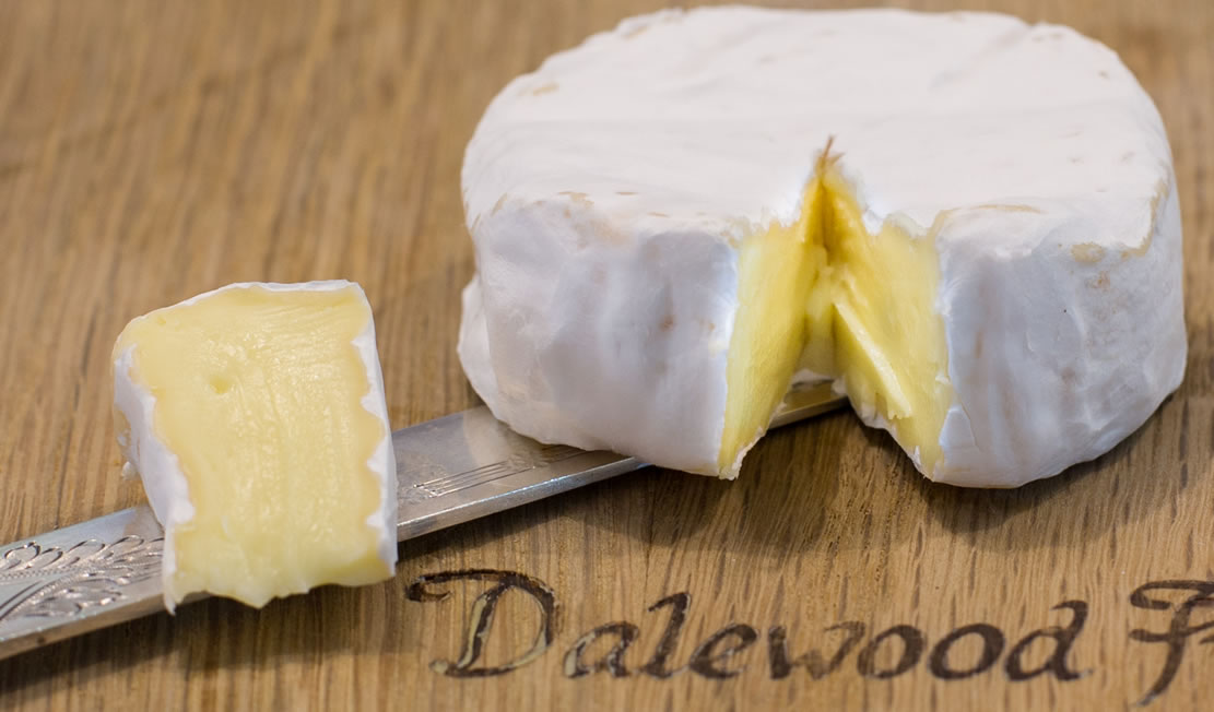Dalewood Fromage Baby Wineland Camembert