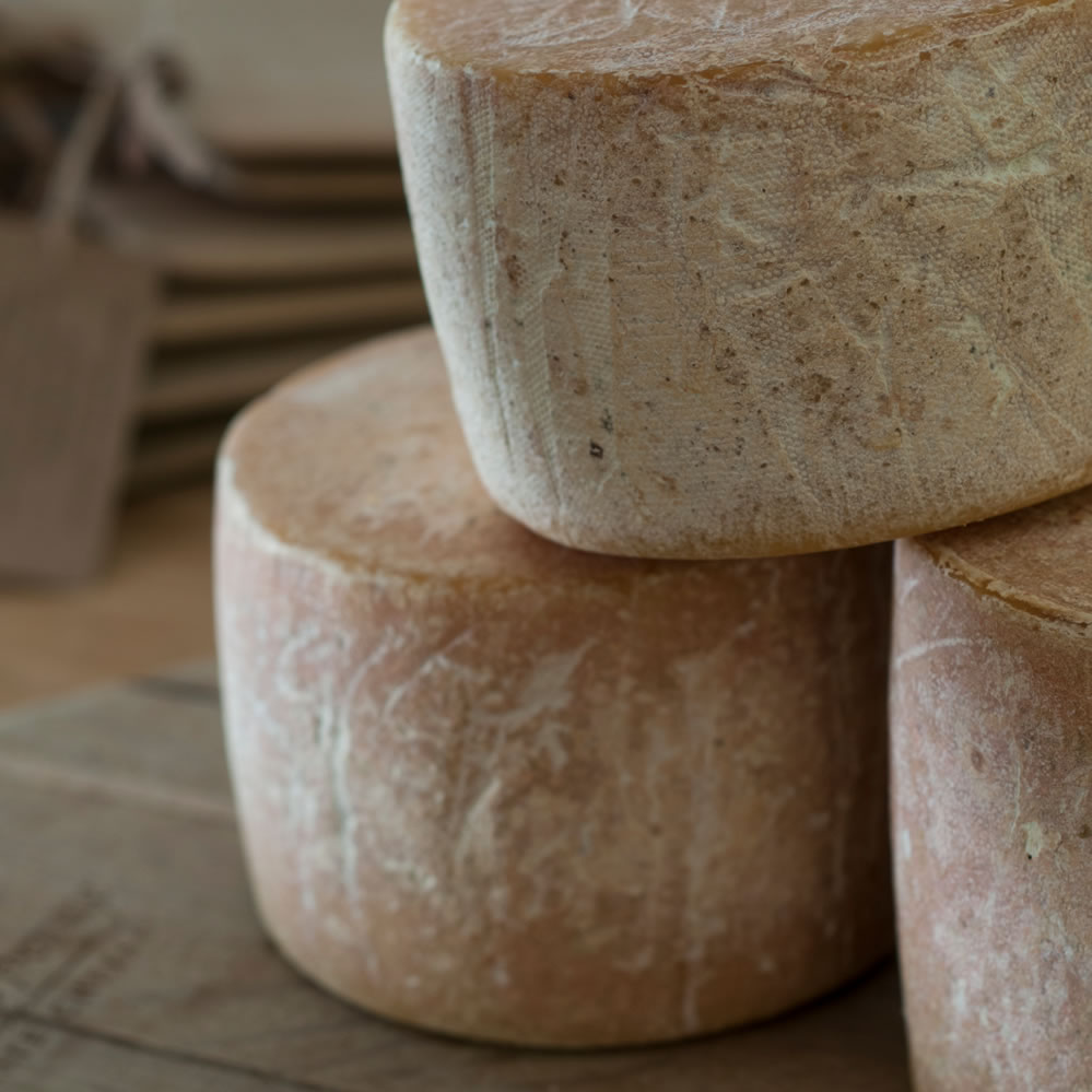 Artisanal cheese, Boland, Cape Winelands, South Africa